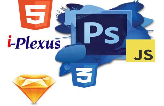 i_plexus3